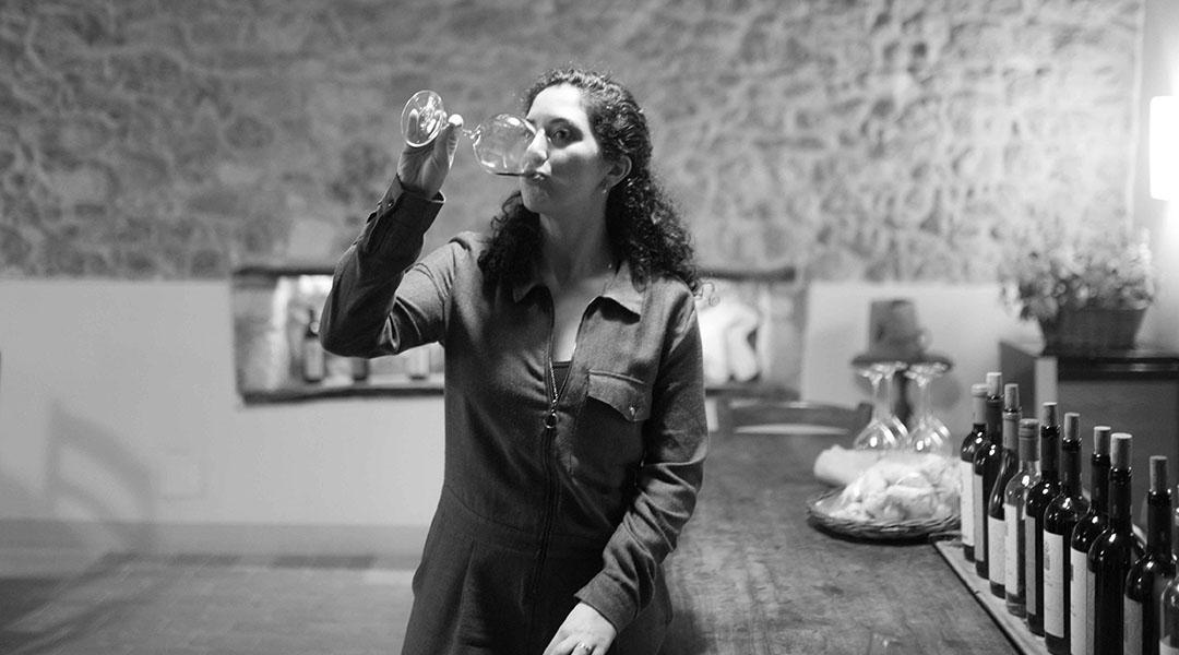 Colli Berici Yeasteria Vino Biologico Winetour