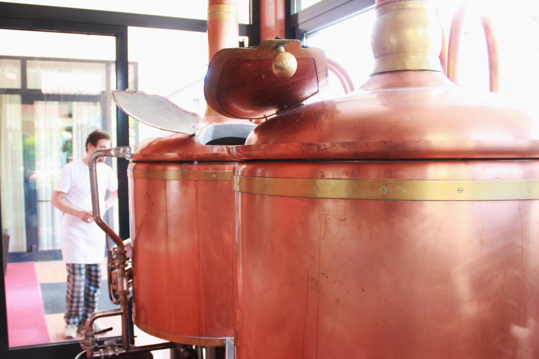 yeasteria birra sancolodi