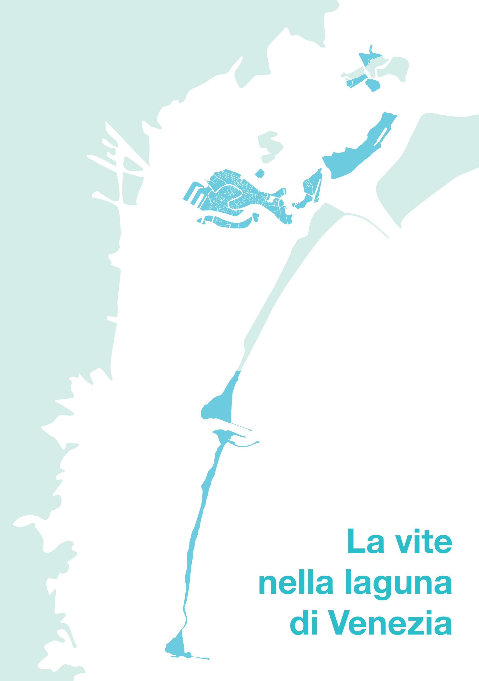 Yeasteria, vite, laguna